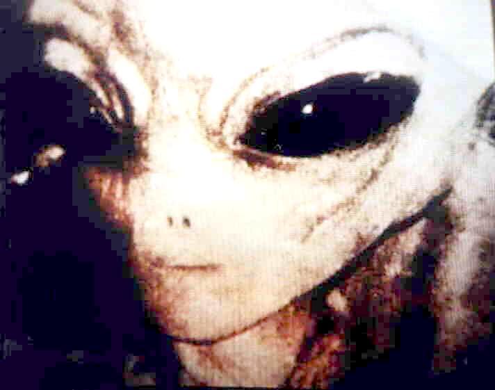 外星人三则