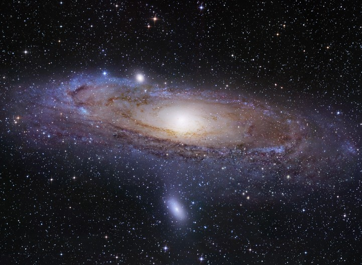 Nikon | Universcale